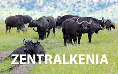 Nationalparks in Zentralkenia